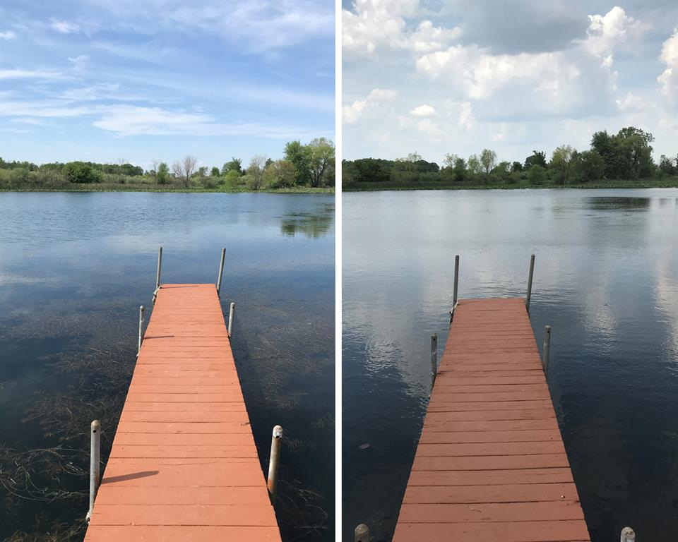 Before and After Submerged Weeds