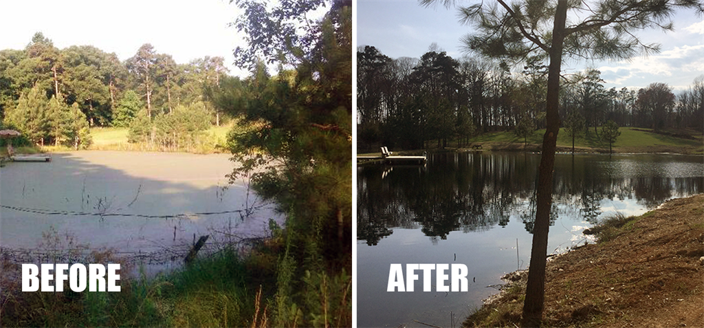 Before and After Pond Treatment Picture