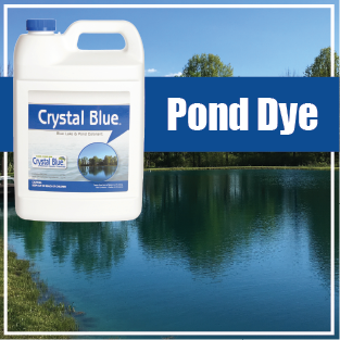 Pond Dye Button