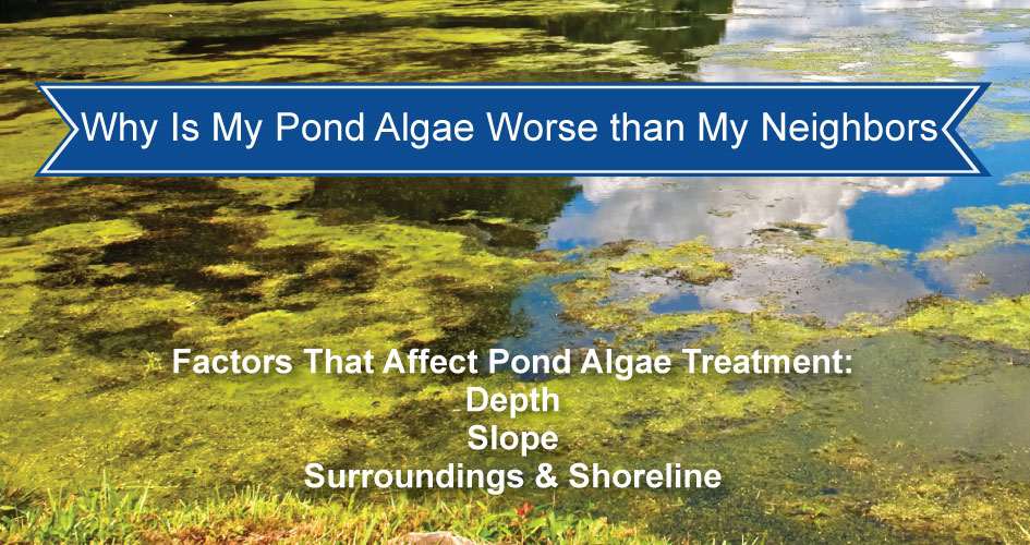 Why is my pond algae treatment different than my neighbors